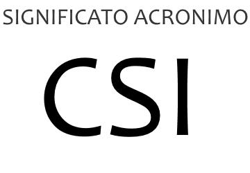 Significato acronimo CSI