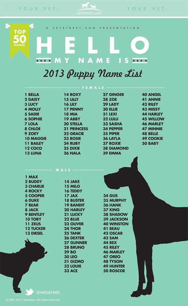 La Top 50 Dei Nomi Per Cuccioli